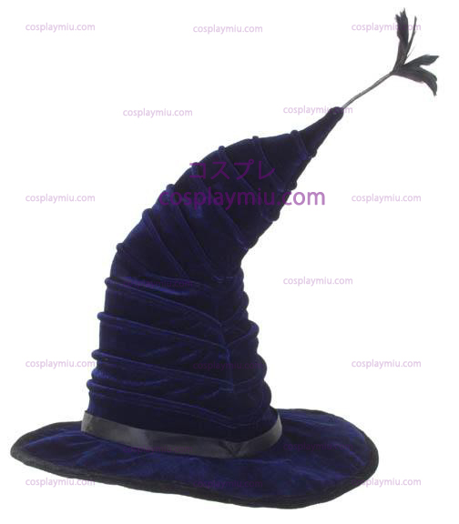 Harry Potter Madame Hooch Hat